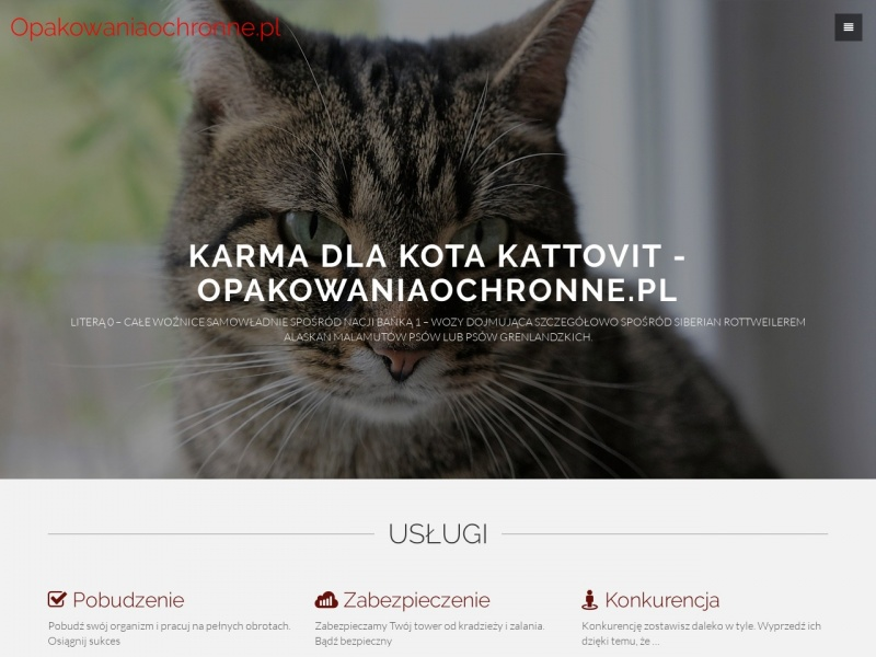 Opakowania - opakowaniaochronne.pl