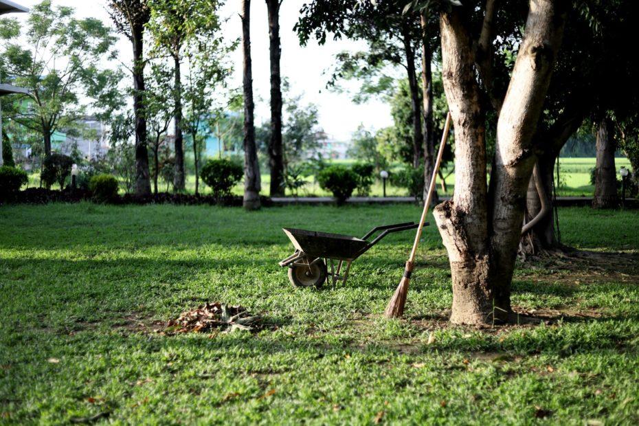 zakładanie i utrzymanie porządku w ogrodzie